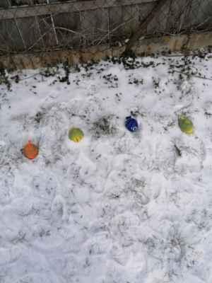 Barevné malování ve sněhu MŠ