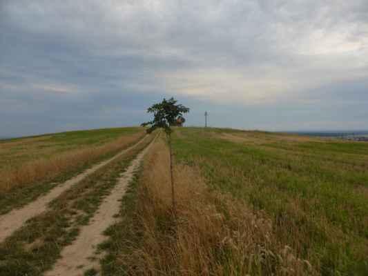 Tak idem pozrieť na Ostrý vrch nad obcou Gbely a fotené 11.augusta 2020.