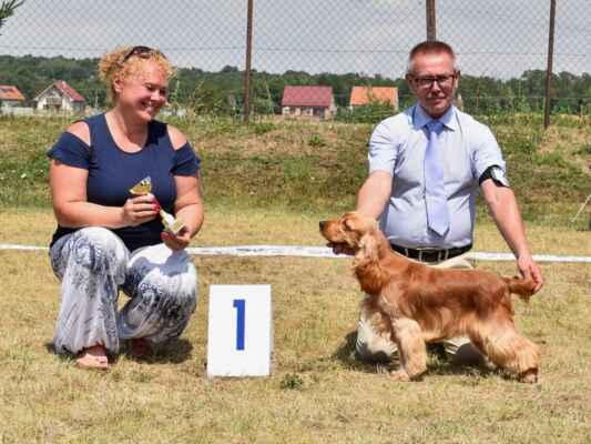 SUKY/FEMALE - TRIEDA MLADÝCH/JUNIOR CLASS 45KEY'LA BLUE VALLEY OF DOGS, PKR.VIII-41169, 29.09.2020  O: AMBER RICCI CLUB M: XENIA BLUE VALLEY OF DOGS MAJ: BRZEZIŃSCY RENATA WALDEMAR  V 1, CAJC, Klubová víťazka mladých / Exc 1, CAJC, Junior club winner