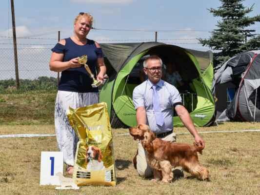 45KEY'LA BLUE VALLEY OF DOGS, PKR.VIII-41169, 29.09.2020  O: AMBER RICCI CLUB M: XENIA BLUE VALLEY OF DOGS MAJ: BRZEZIŃSCY RENATA WALDEMAR  V 1, CAJC, Klubová víťazka mladých / Exc 1, CAJC, Junior club winner