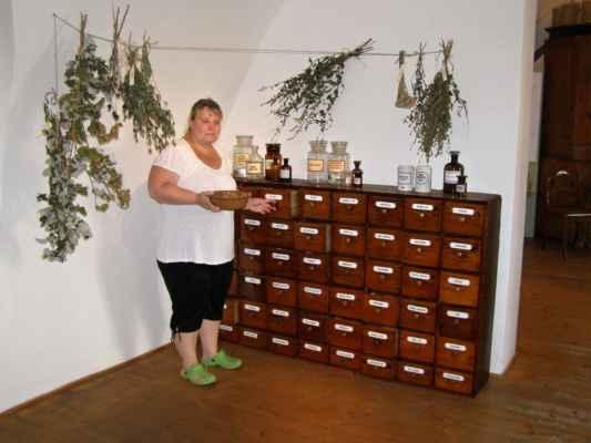 Hlučín - zámek - budova zámku - muzeum - výstava Léčivé bylinky
