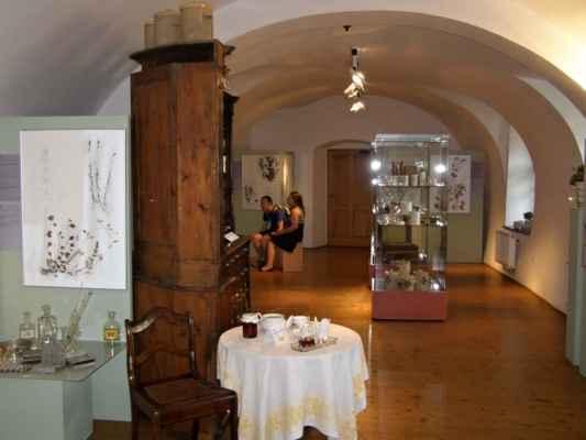 12 - Hlučín - zámek 13 - budova zámku - muzeum - výstava Léčivé bylinky