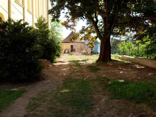 21.05.2020 - Pohled na baštu od plotu.