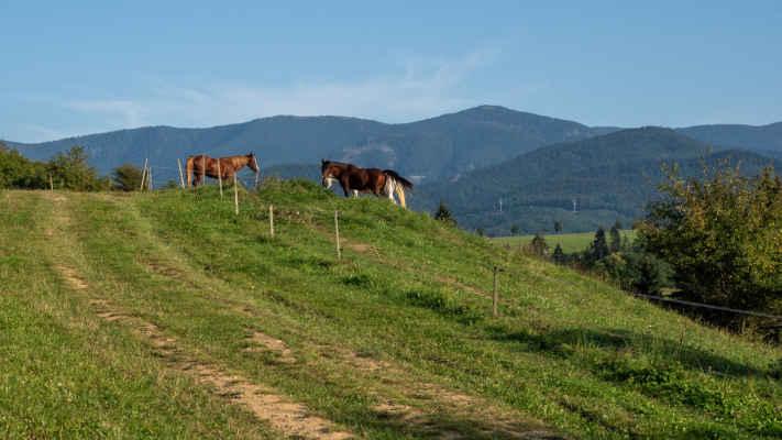 Hrebeň Lúčanskej Malej Fatry a Minčol (1364 m n. m.)