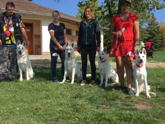 svod Coudy +Cowley + Cassidy +Ciri